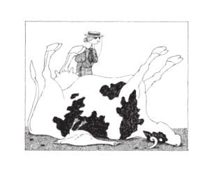 Ilustraciones ofrecidas por la editorial Libros del Zorro Rojo